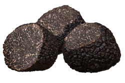 Premium Black Truffles angellozzi Selection Pieces