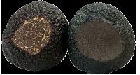 Черный ценный трюфель angellozzi