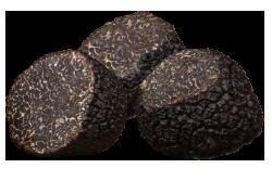 珍贵黑块菌 angellozzi 零块品选择