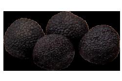 珍贵黑块菌 angellozzi 超极品精选