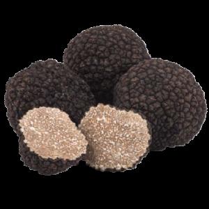 summer black truffles angellozzi