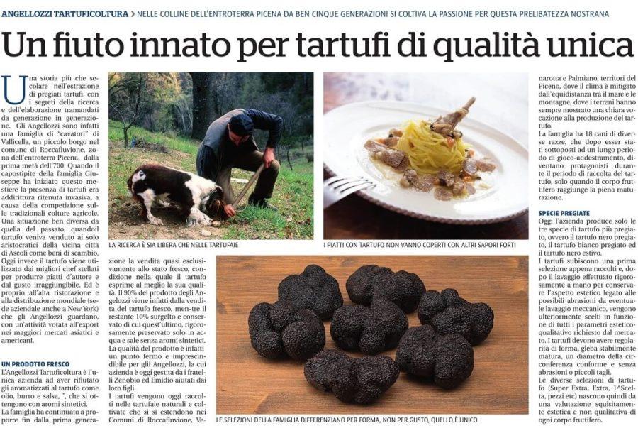 Angellozzi Tartuficoltura su Repubblica
