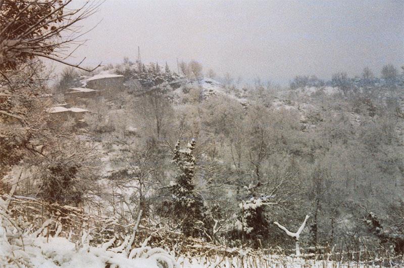 foto campi invernali angellozzi